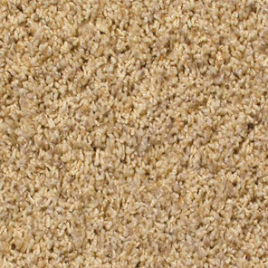 Frieze the knowledgeable choice for wear ability for Best wearing carpet for high traffic areas